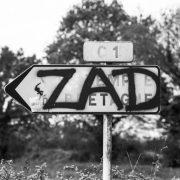 zadibao's Company logo